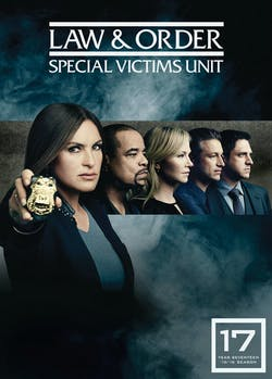 Law and Order - Special Victims Unit: Season 17 [DVD]