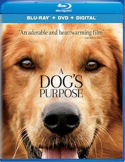 A Dog's Purpose (DVD + Digital) [Blu-ray]