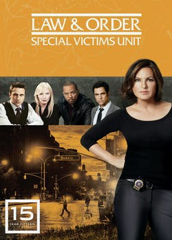 Law and Order - Special Victims Unit: Season 15 [DVD]