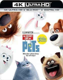 The Secret Life of Pets (4K Ultra HD) [UHD]
