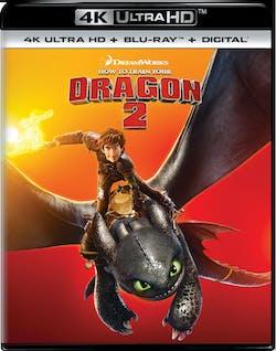 How to Train Your Dragon 2 (4K Ultra HD) [UHD]