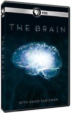 The Brain with David Eagleman [DVD]