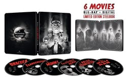 Universal Classic Monsters Collection (Box Set (Steelbook)) [Blu-ray]