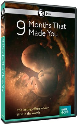 9 Months That Made You [DVD]