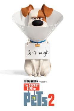 The Secret Life of Pets 2 [Digital Code - UHD]